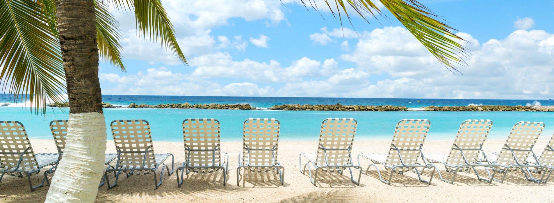 Astounding Home Curacao Film Office Ibusinesslaw Wood Chair Design Ideas Ibusinesslaworg